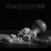 nateleavitt-singles-house-moe